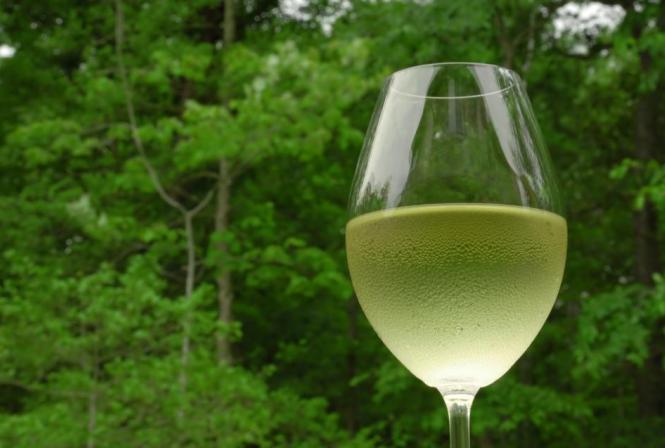 Le floreal dans l'espace sensoriel des vins blancs du Val de Loire