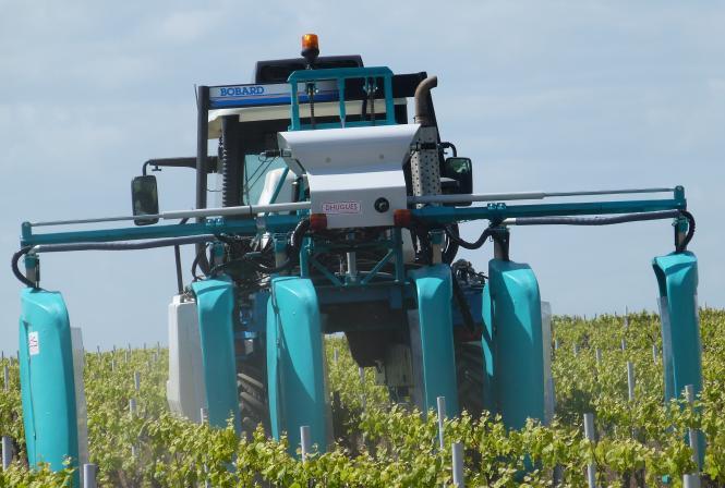 Réglementation sur les produits phytosanitaires à l'export