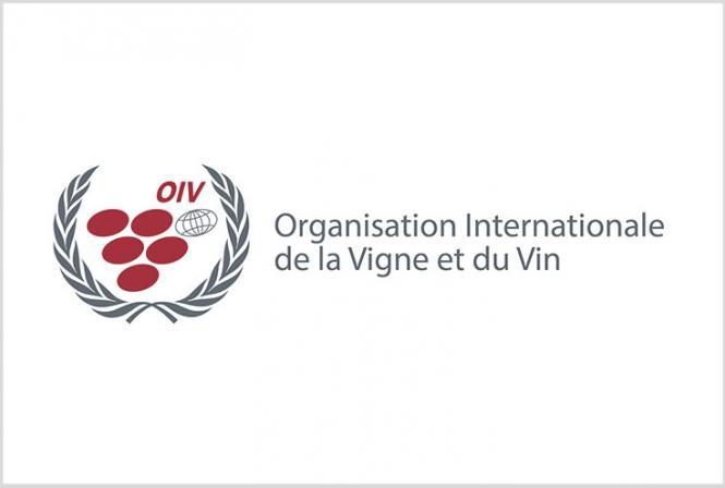 Résumé des résolutions adoptées par l'OIV