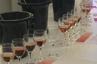 De nouveaux outils pour les rosés de l'Anjou